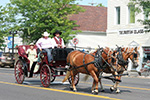 Carriage Festival 2014